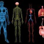 Autonomic Neuropathy Symptoms