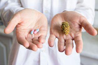 treating Chronic Neuropathic Pain Medical Marijuana vs Opioids